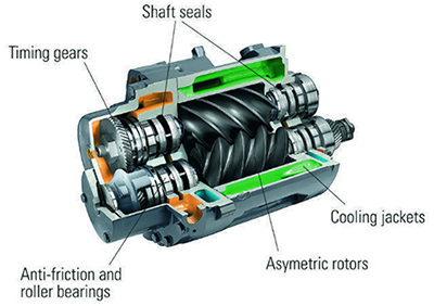 parts of an oil-free screw compressor